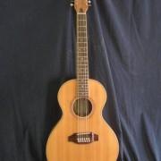 Guitarra de doce cuerdas 1