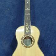 Guitarra parlor1
