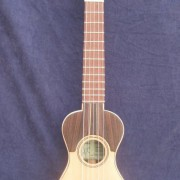 Guitarró 2