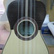 Guitarro de ocho cuerdas 2