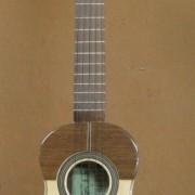 Guitarro macho 1