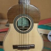 Guitarro macho 3