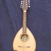 Mandolina  4
