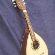Mandolina  5